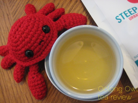 Ginger Zinger from Steep City Tea - Oolong Owl Tea Review (6)