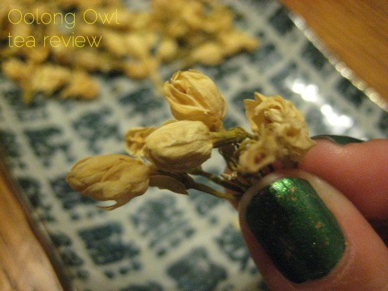 Jasmine Blossom from Natures Tea Leaf - Oolong Owl tea review (3)