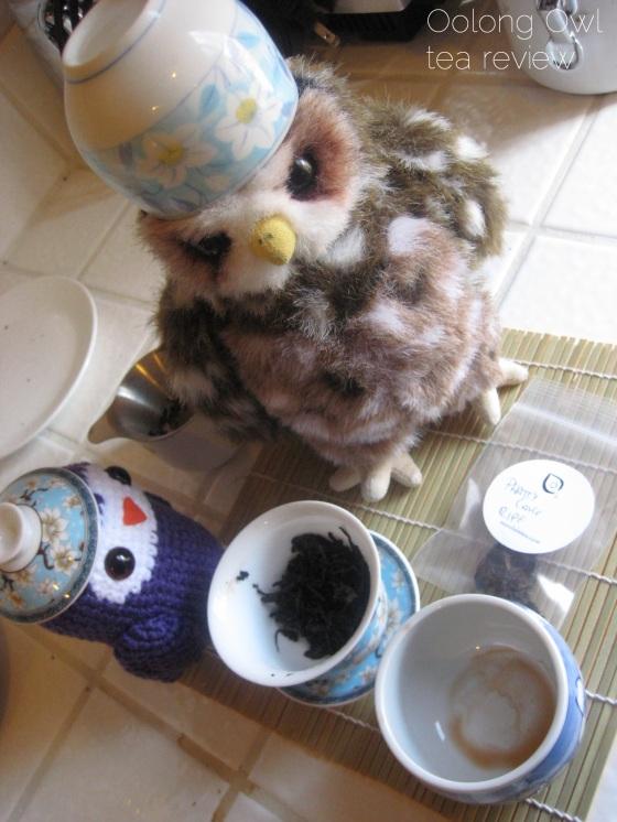 Mandala Phatty Cake - Oolong Owl Tea review (10)