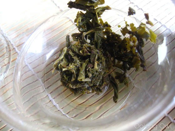 Oolong Owls first tuocha (16)