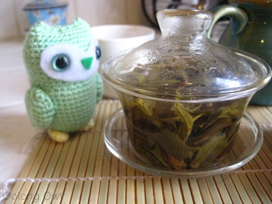 2013 Yiwu Spring Sheng Pu er from Misty Peak Teas - Oolong Owl Tea Review (11)