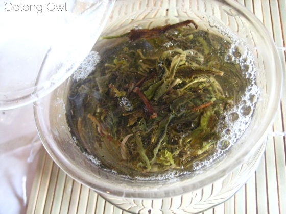 2013 Yiwu Spring Sheng Pu er from Misty Peak Teas - Oolong Owl Tea Review (5)