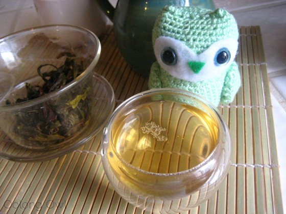 2013 Yiwu Spring Sheng Pu er from Misty Peak Teas - Oolong Owl Tea Review (6)