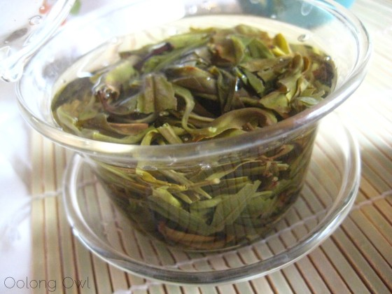 2013 Yiwu Spring Sheng Pu er from Misty Peak Teas - Oolong Owl Tea Review (9)