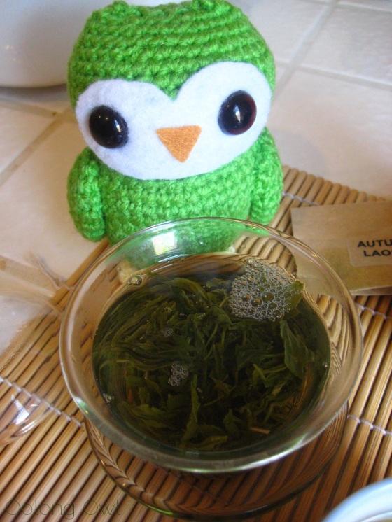 Autumn Harvest Laoshan Green from Verdant Tea - Oolong Owl tea review (9)