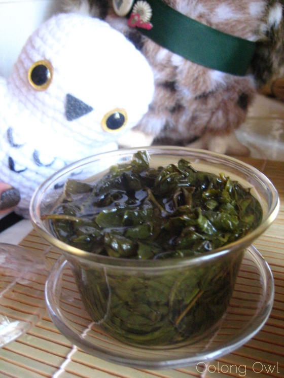 Milk Oolong from Mandala Tea - Oolong Owl Tea Review (16)