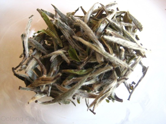 Organic Silver Needle White Tea from Teavivre - Oolong Owl Tea Review (2)