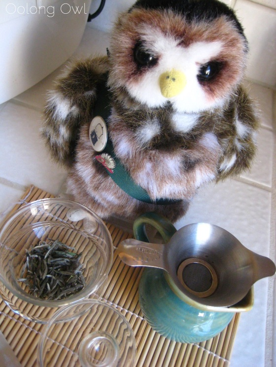 Organic Silver Needle White Tea from Teavivre - Oolong Owl Tea Review (4)
