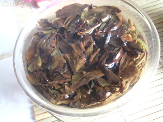 Taiwan Oriental Beauty Bai Hao from Teavivre - Oolong Owl Tea Review (15)