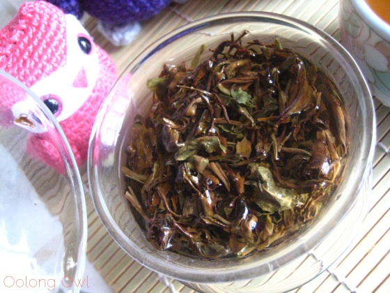 Taiwan Oriental Beauty Bai Hao from Teavivre - Oolong Owl Tea Review (8)