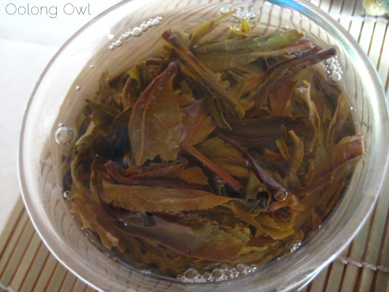 Autumn 2012 Sheng Pu er from Misty Peak Teas - Oolong Owl Tea Review (15)