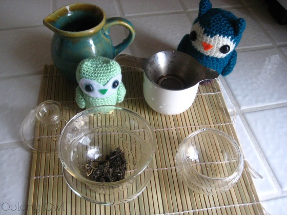 Autumn 2012 Sheng Pu er from Misty Peak Teas - Oolong Owl Tea Review (4)