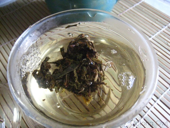 Autumn 2012 Sheng Pu er from Misty Peak Teas - Oolong Owl Tea Review (7)