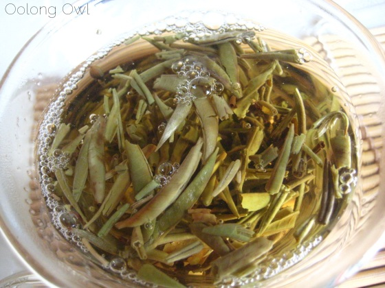 Mandala Tea Silver Buds Raw Puer 2012 - Oolong Owl Tea Review (18)
