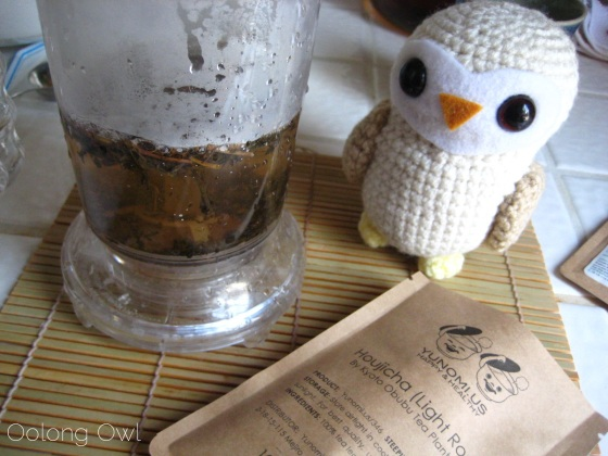 Houjicha from Yunomi Obubu Tea - Oolong Owl Tea Review (5)